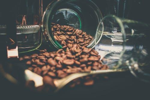 Fotos de stock gratuitas de café, cafeína, cristal, granos de café