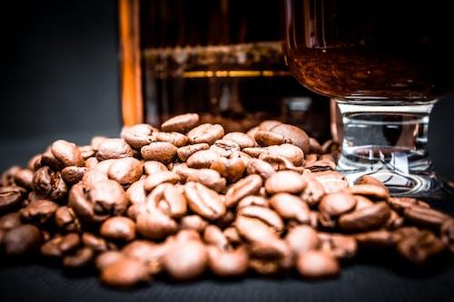 Fotos de stock gratuitas de alubias, aroma, café, cafeína