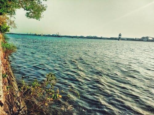 Foto profissional grátis de água do mar
