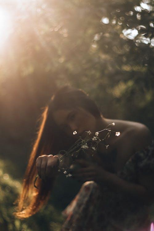 Безкоштовне стокове фото на тему «вода, Денне світло, дика природа»