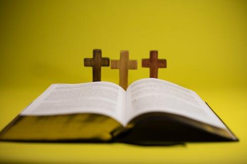Gratis arkivbilde med åpen, bibel, bok