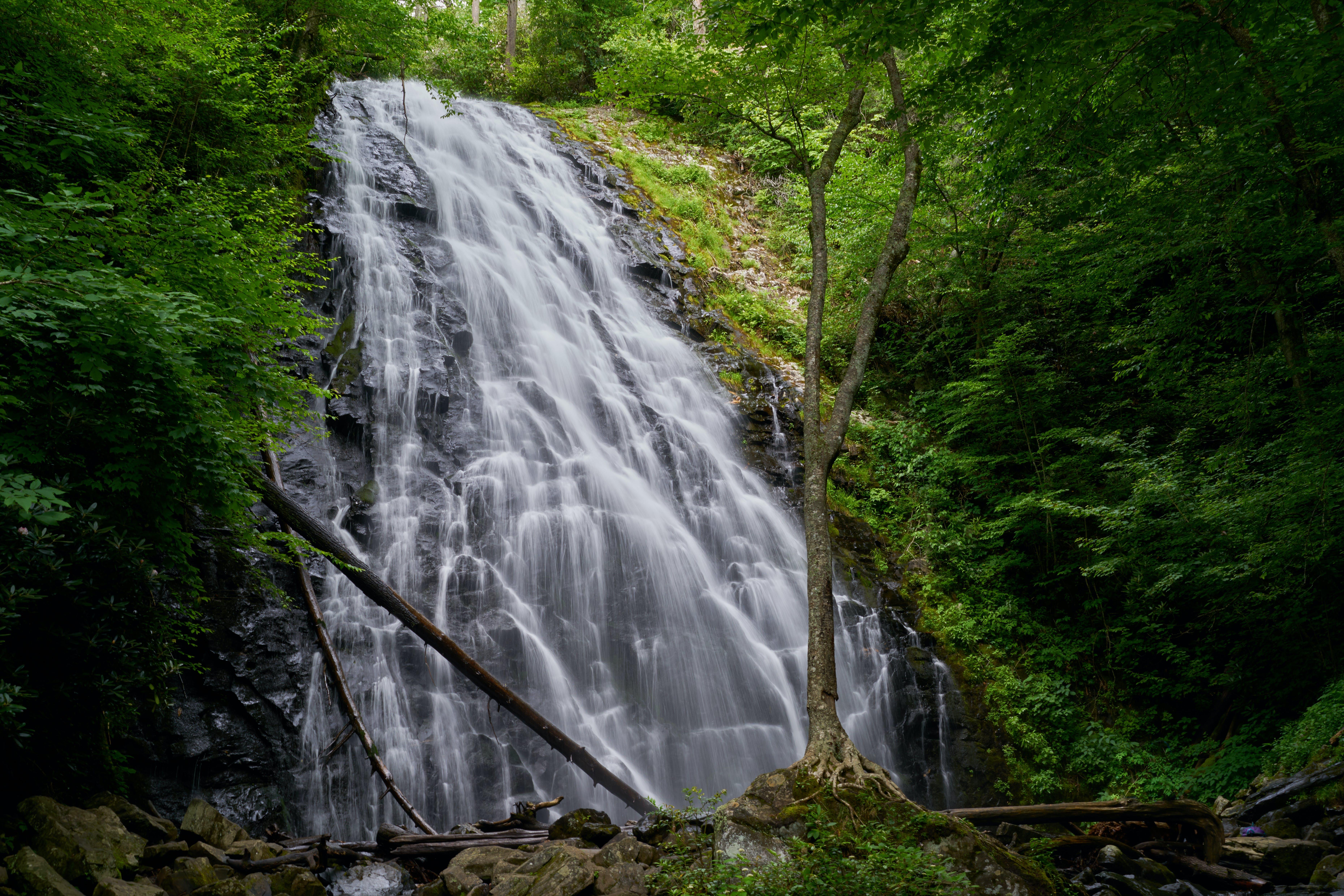 Kostenloses Stock Foto zu fließen, kaskade, landschaftlich, natur