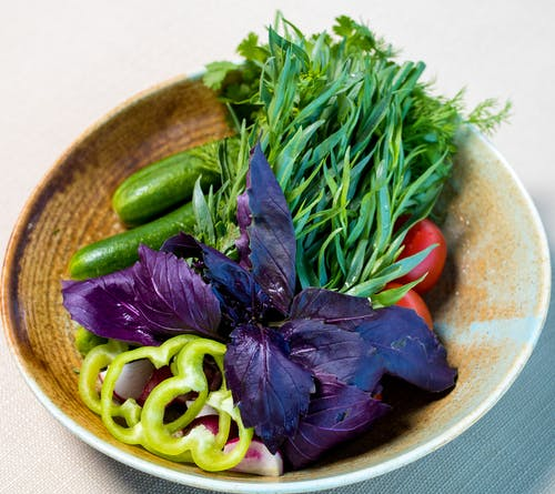 Close-Up Shot of Vegetables on Plate