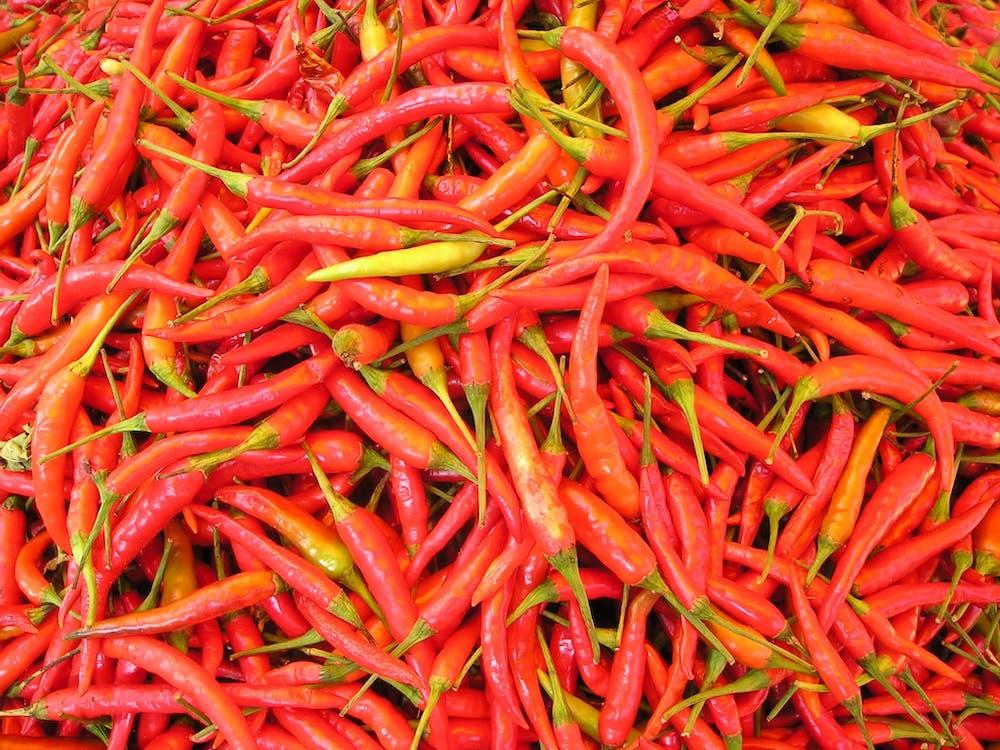 čerstvý, červená, čili papričky