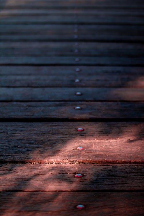 Ilmainen kuvapankkikuva tunnisteilla hirsi, johtokunta, jyvä