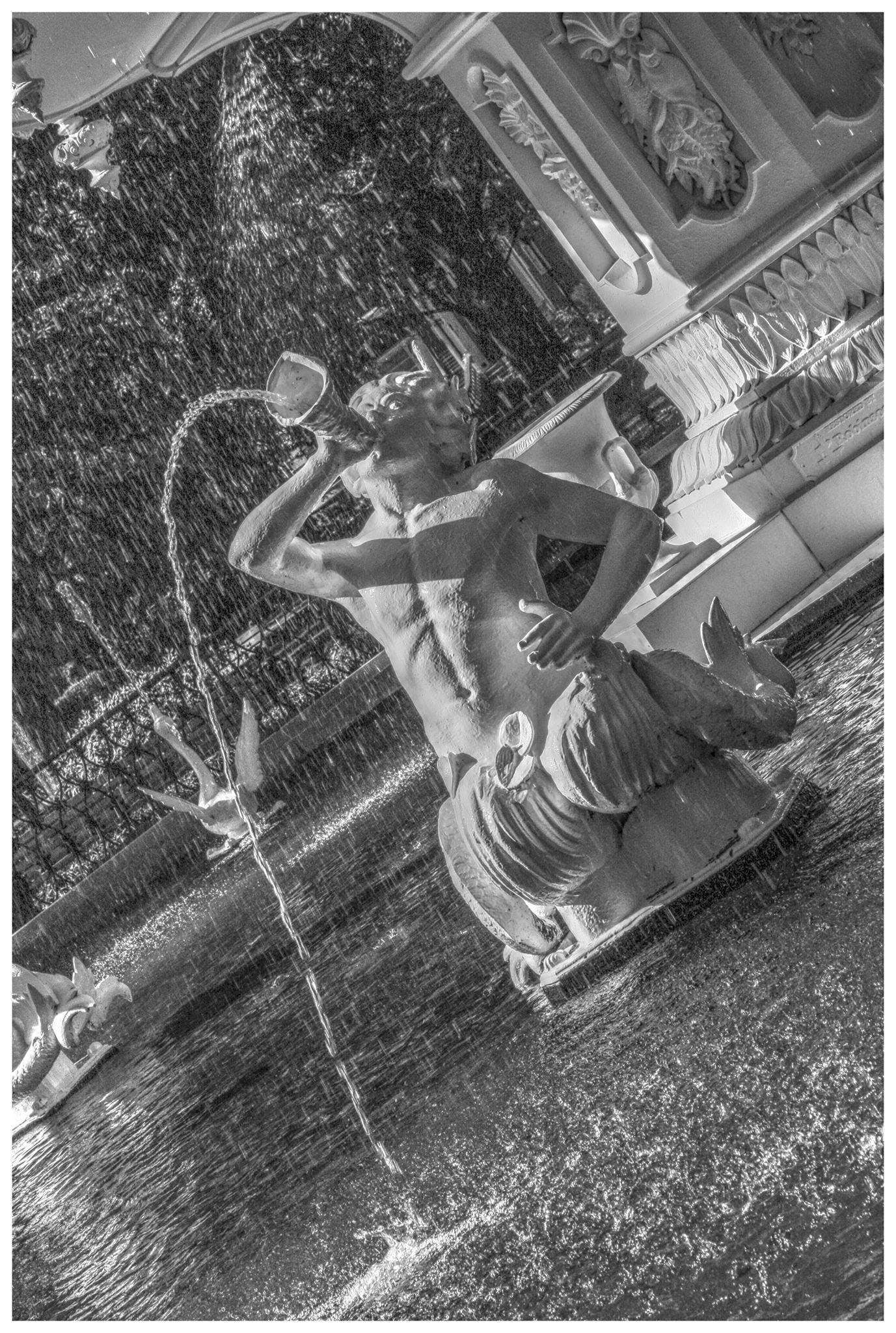 Free stock photo of black and white, fountain, savannah, water