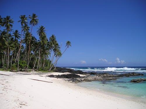 Foto profissional grátis de água, areia, beira-mar, costa