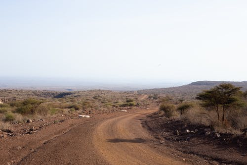 Free stock photo of desert road