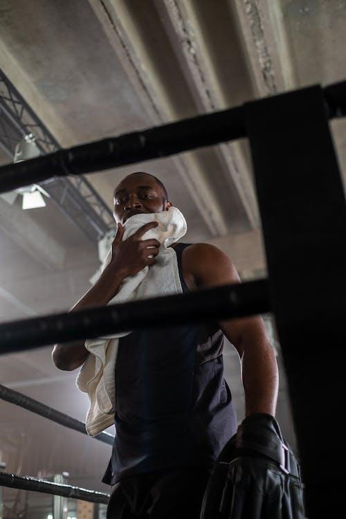 Free stock photo of adult, athlete, battle