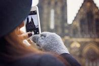 camera, iphone, smartphone