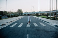 road, person, woman