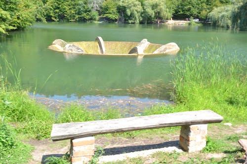 Imagine de stoc gratuită din corp de coloană, fundal 2020, lac
