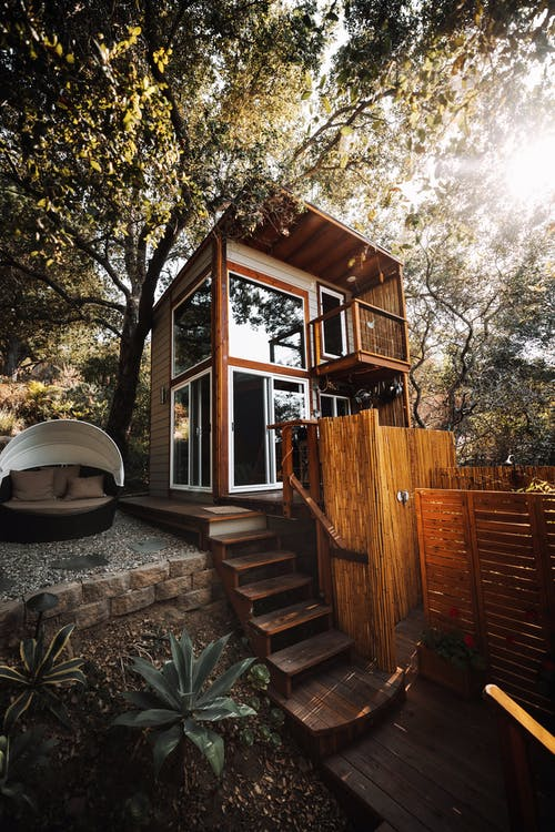 Immagine gratuita di albero, architettura, autunno