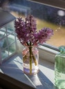 flowers, glass, colors