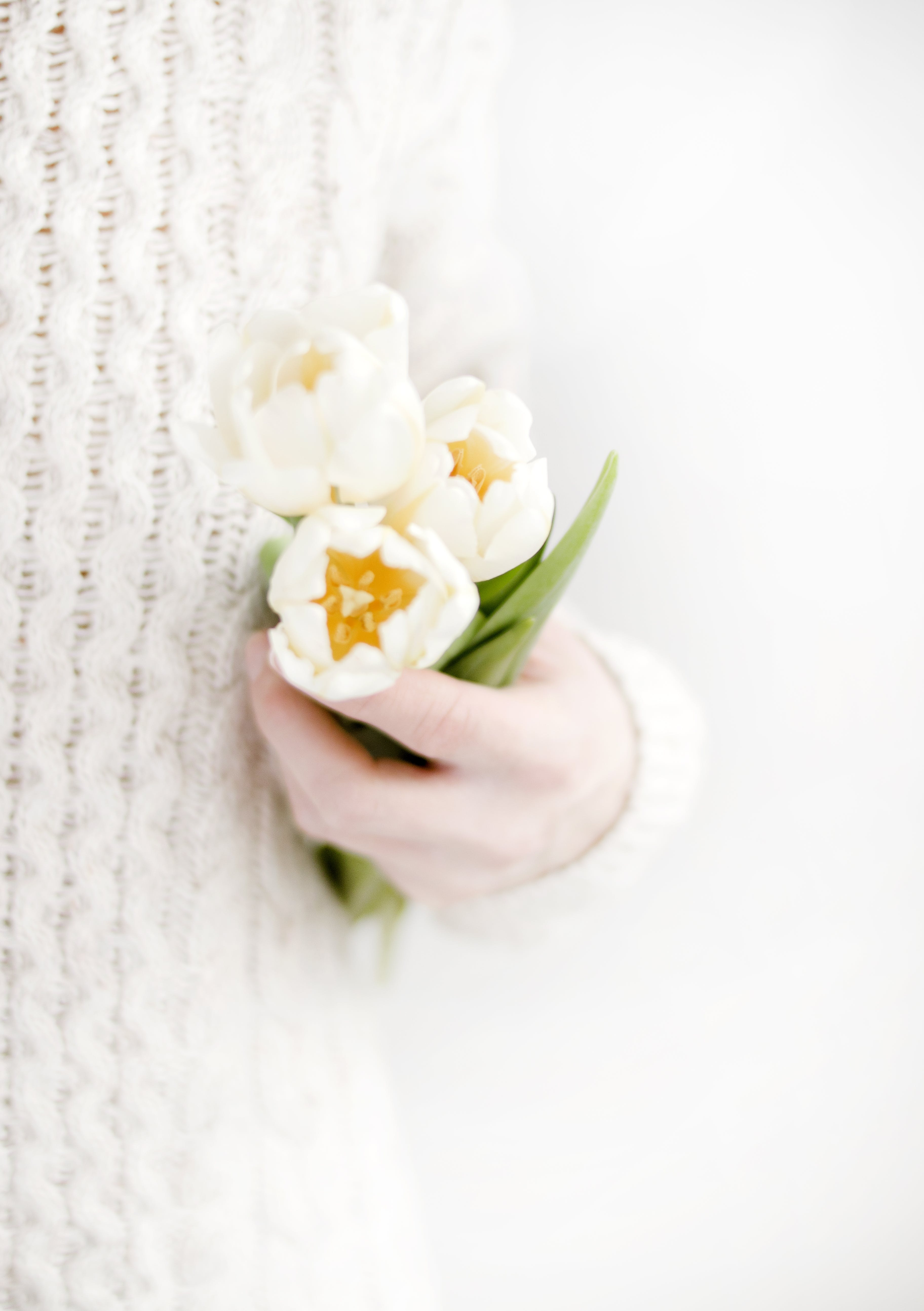 Person Holding White Petal Flowers