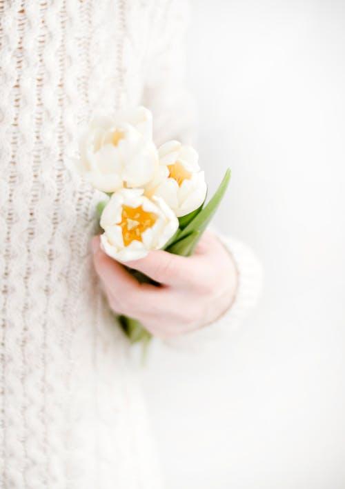 bitki örtüsü, Çiçek açmak, Çiçekler, el içeren Ücretsiz stok fotoğraf