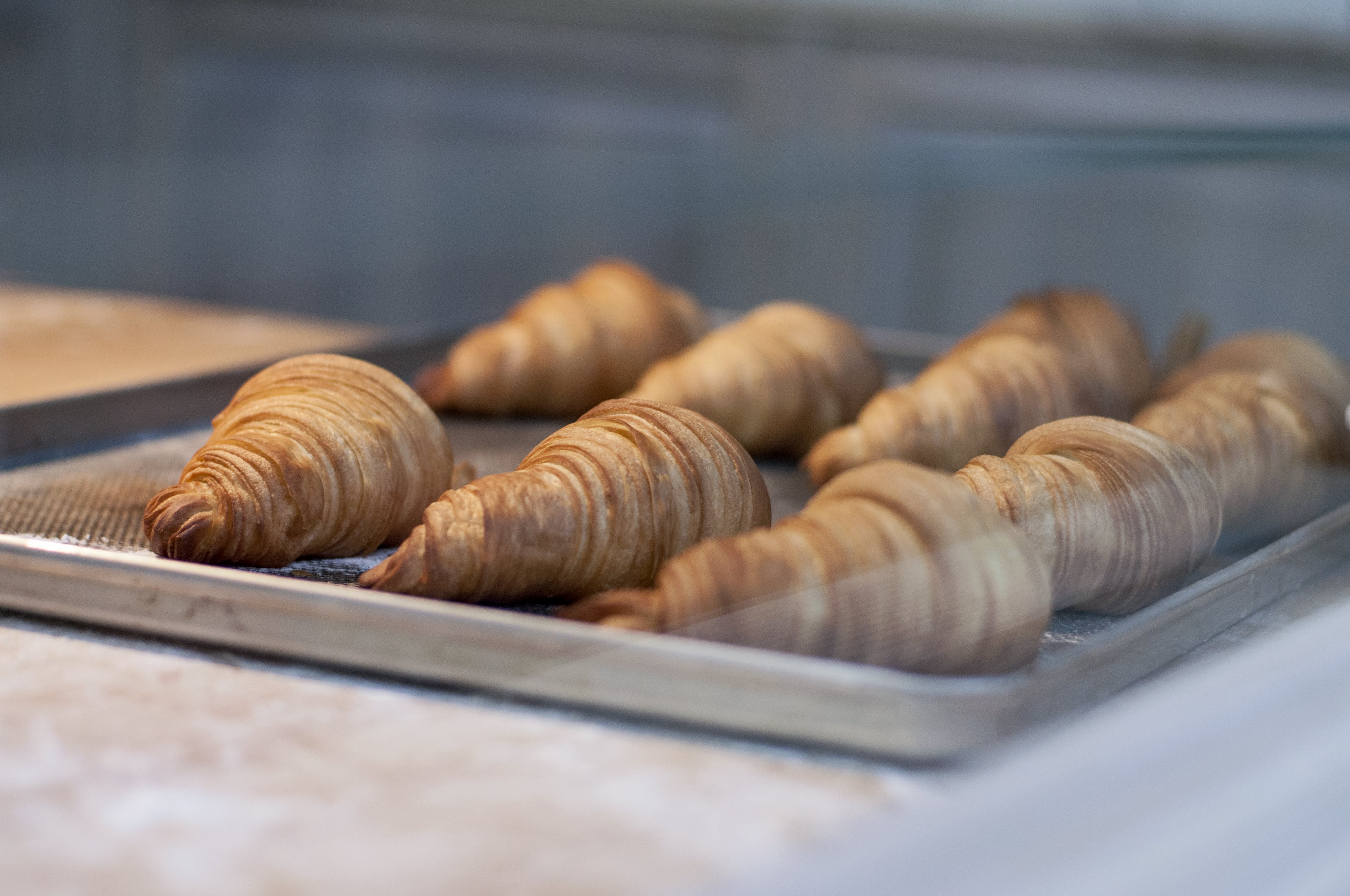 bakery, breakfast, croissants