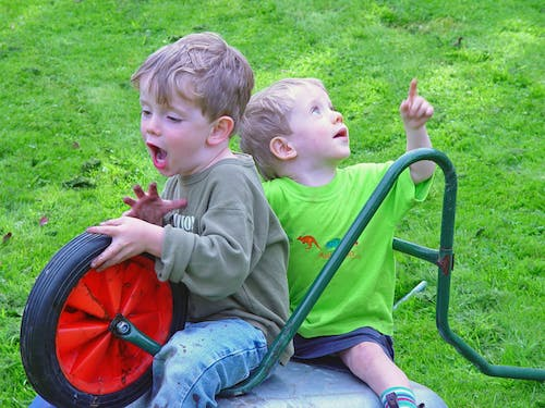 Free stock photo of boys, brothers, kids, play