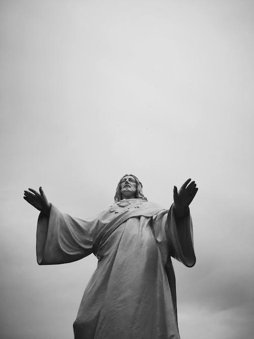 Foto profissional grátis de adulto, arte, Bíblia