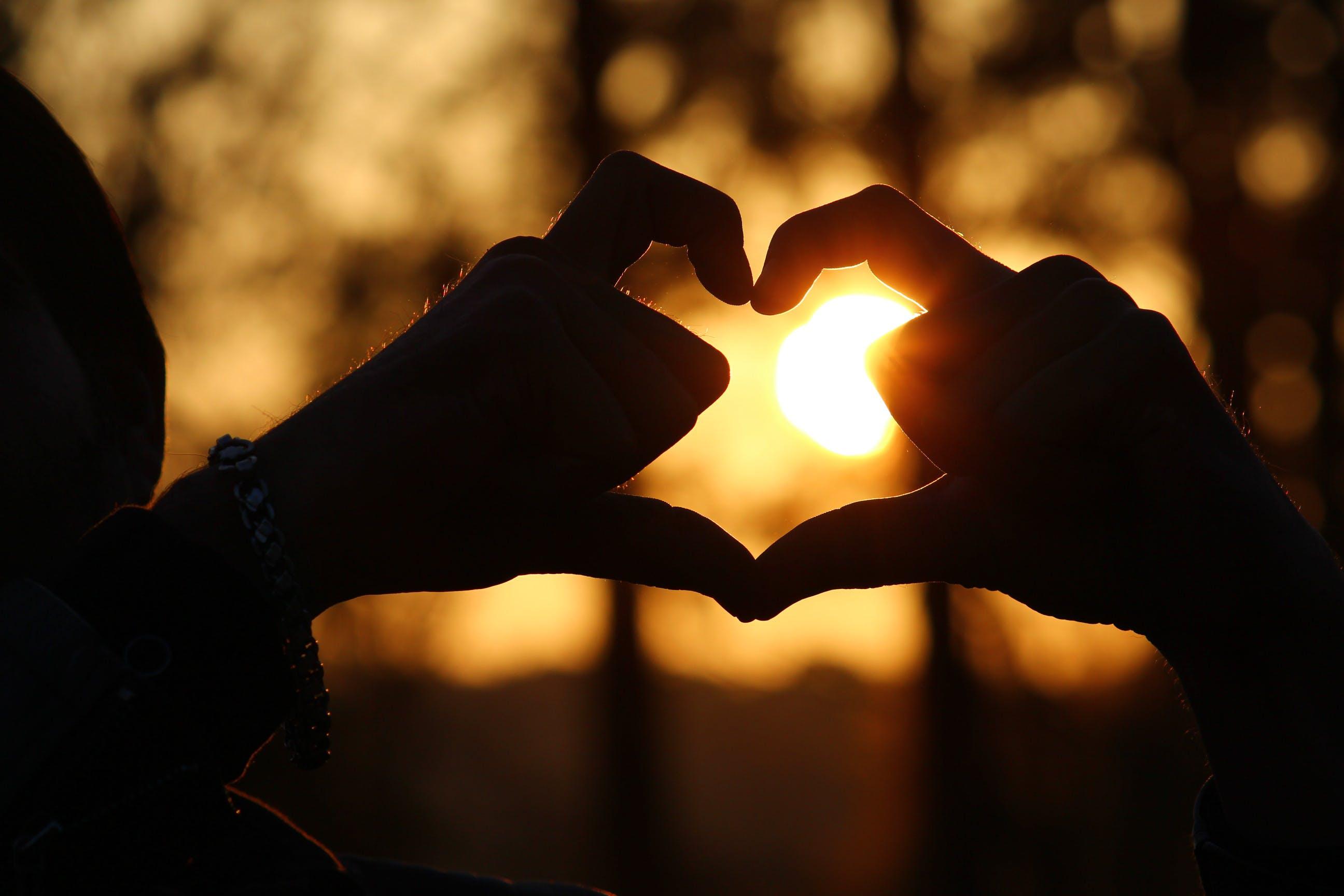 Free stock photo of evening sun, feeling, golden sun, heart