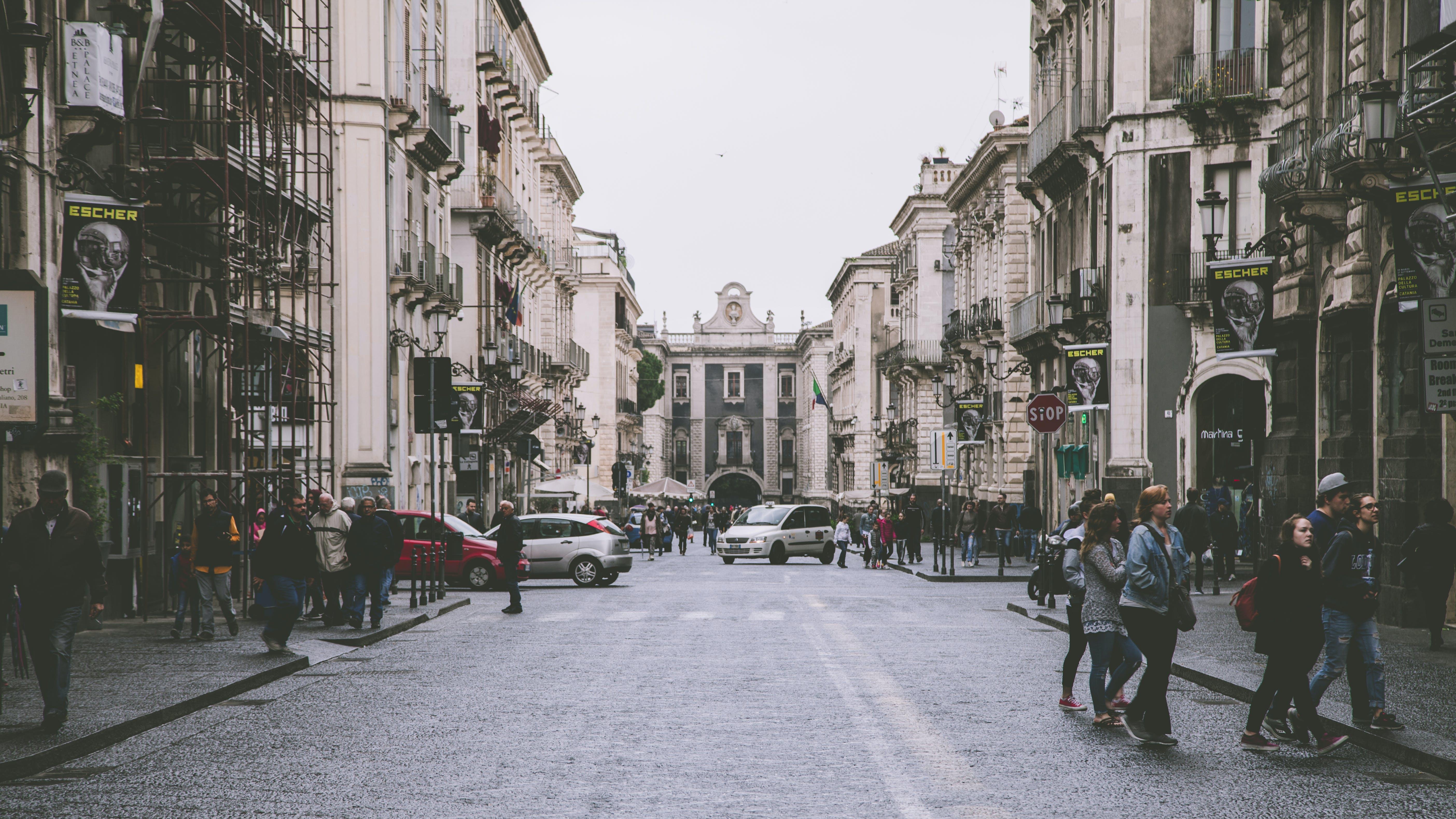Group of People Walking on Street