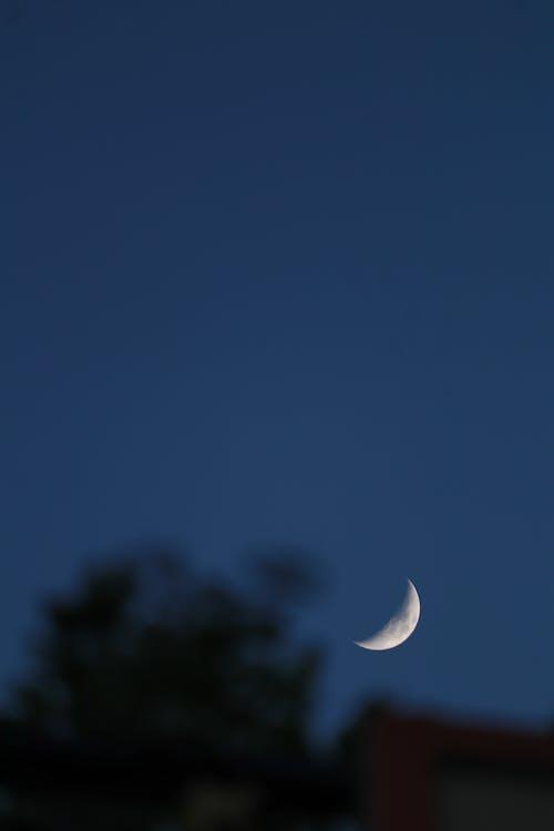 Fotos de stock gratuitas de astronomía, creciente, Luna