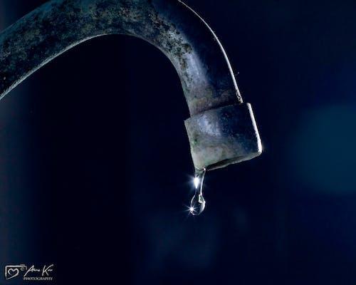 Gratis arkivbilde med #freezingtime, #vanndråpe, #waterphotography