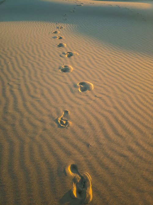 Foto stok gratis bayangan, berpasir, bukit pasir