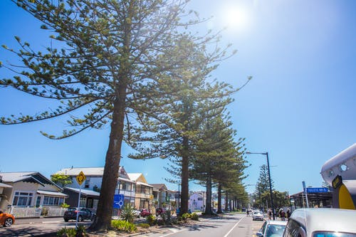 Free stock photo of blue sky, napier, roads