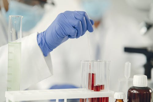 Person Holding a Pipette into a Test Tube
