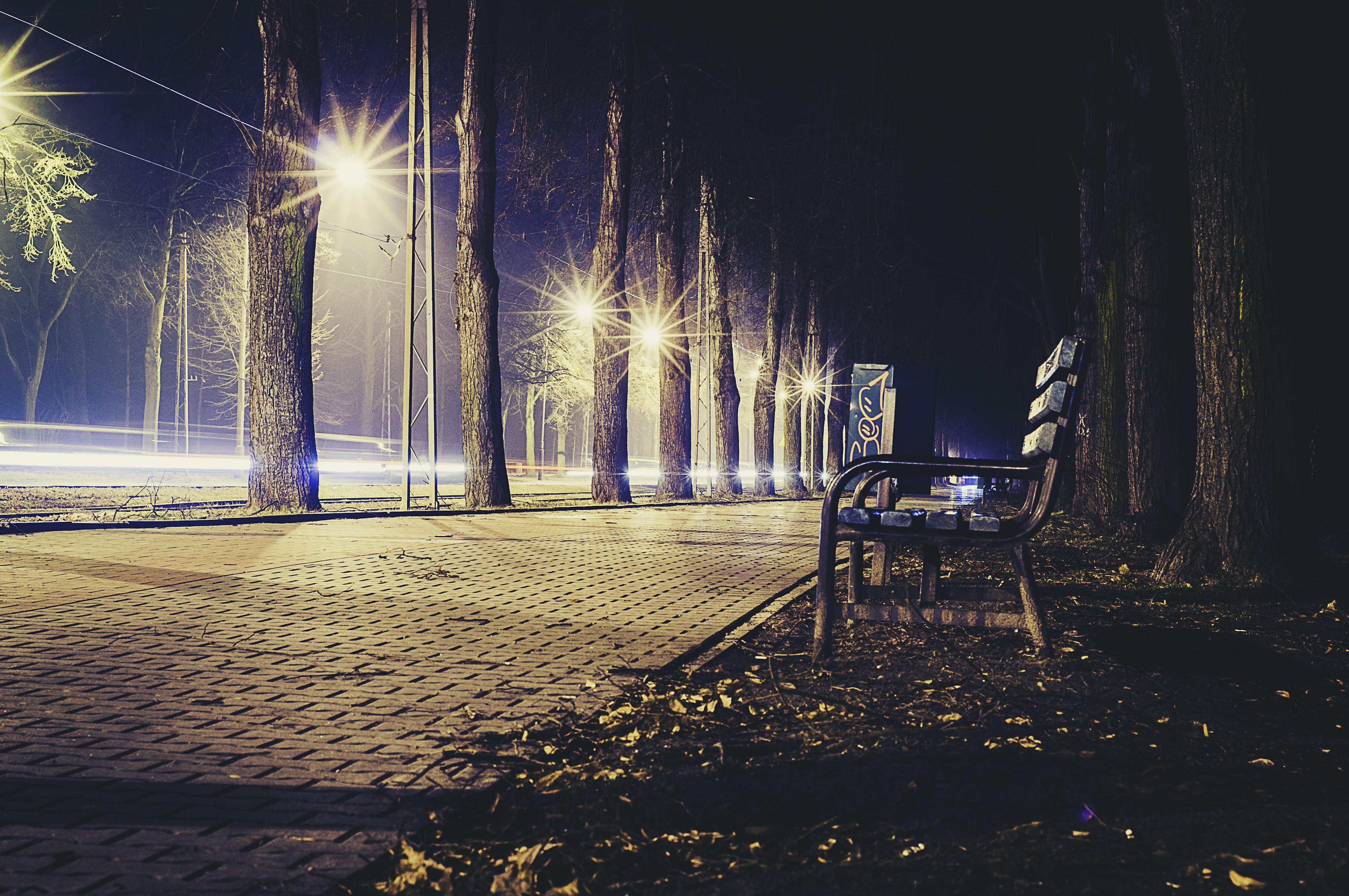 Photography of Brown Bench Beside Walkway and Trees at Night