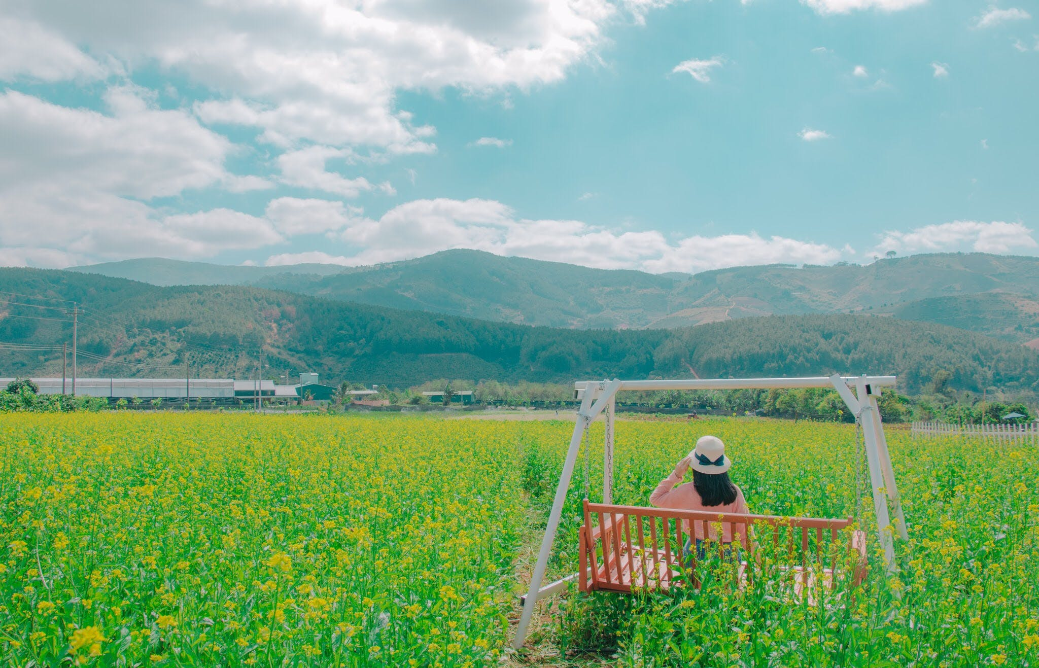 Woman Sits on Brown Wooden Swing Bench on Yellow Petaled Flower Field