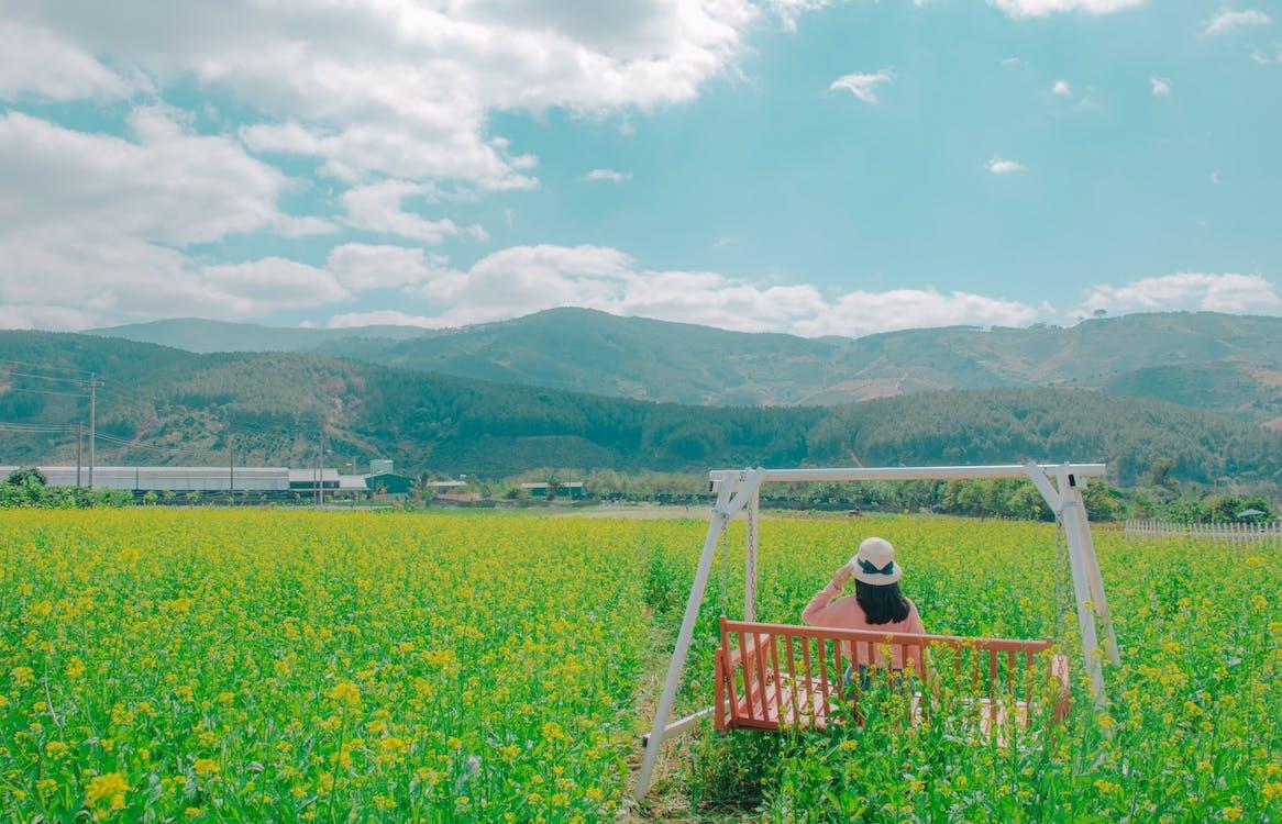 beskära, blommor, bondgård