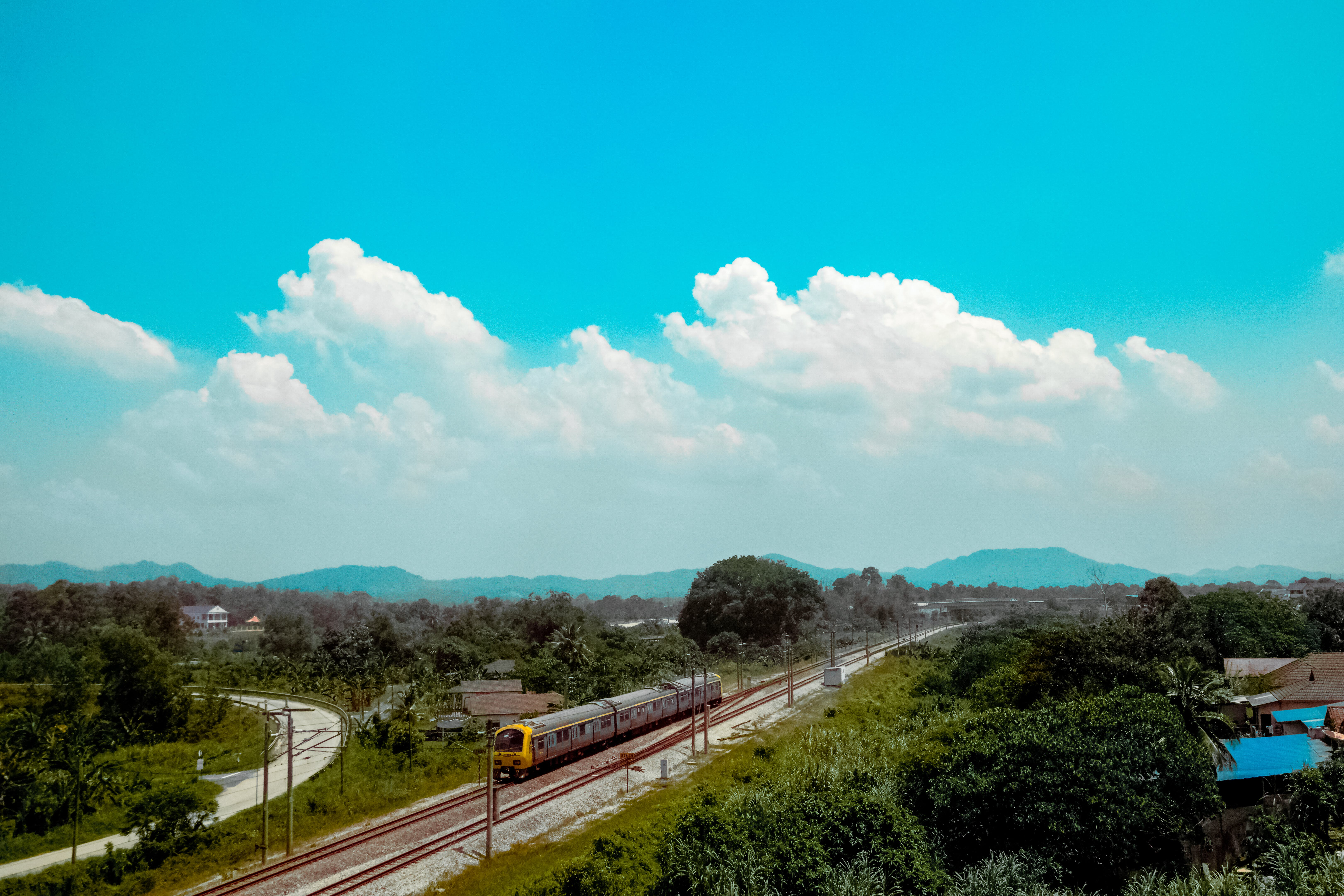 Bird's Eye View of Train Passing by Trees