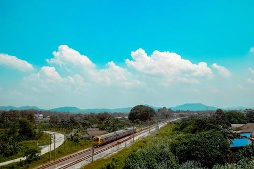 Foto d'estoc gratuïta de a pagès, arbres, boscos, carretera