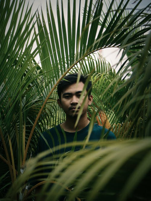 Man in the Middle of Green Plants