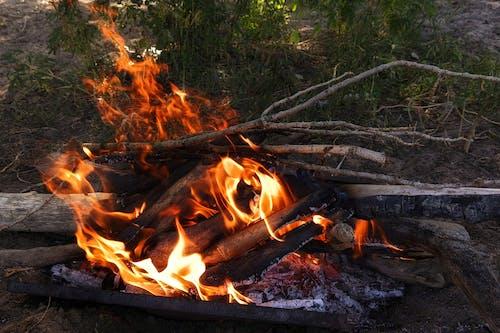 Δωρεάν στοκ φωτογραφιών με άνθρακας, ζεστός, καίω