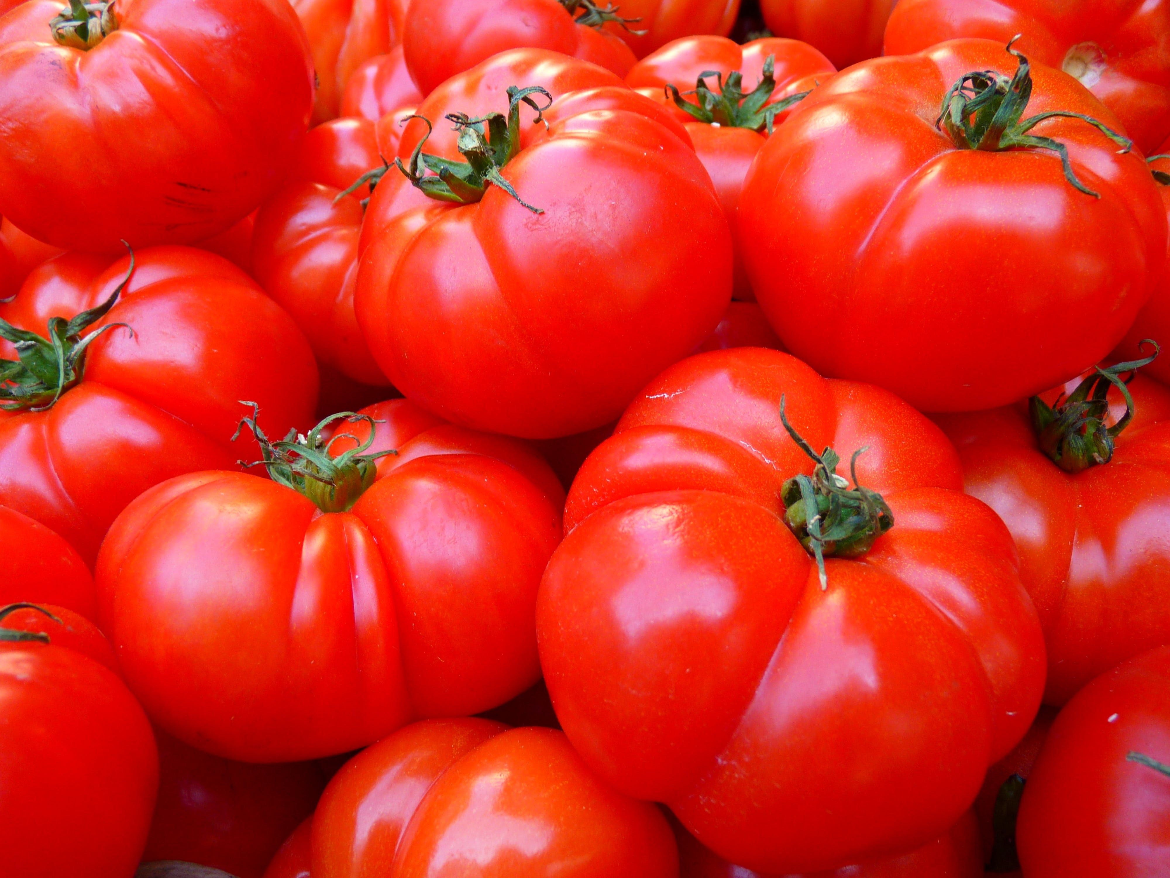 Kostenloses Stock Foto zu essen, rot, tomaten, farbe