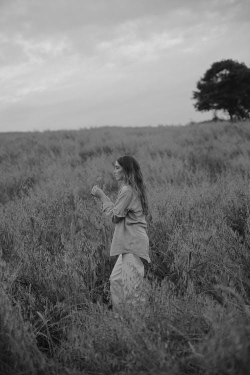 Foto profissional grátis de campo de grama, de pé, escala de cinza
