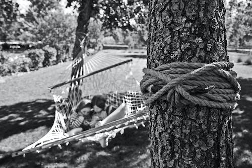 Základová fotografie zdarma na téma černobílá, černobílý, denní, děti