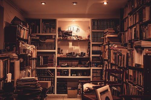 kapalı mekan, kitap dükkanı, kitap rafları, kitap yığını içeren Ücretsiz stok fotoğraf