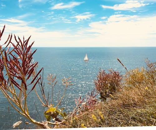 Fotos de stock gratuitas de hermosa linea de costa