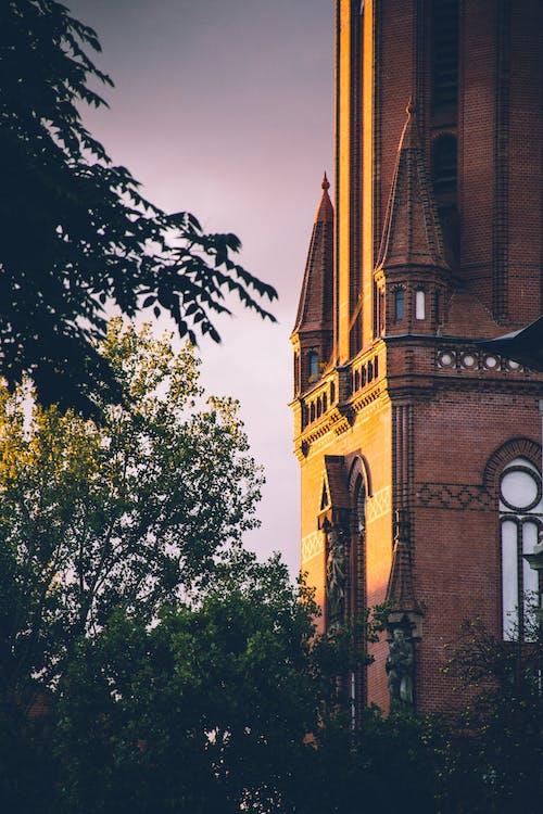 Kostenloses Stock Foto zu architektur, bäume, tageslicht