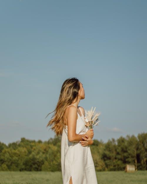 Foto stok gratis angin, cantik, cewek