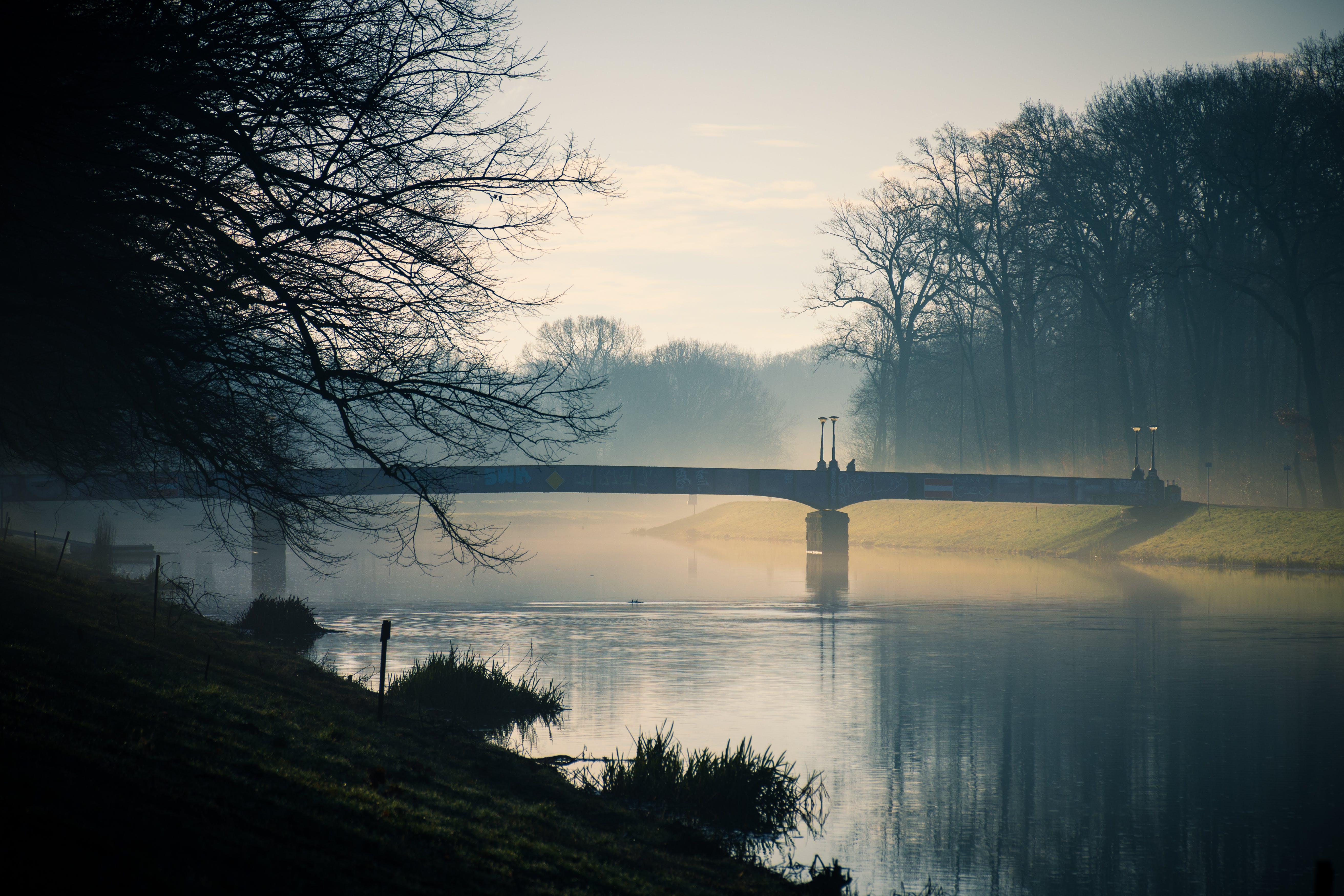 Gray Bridge Above River during Dusk