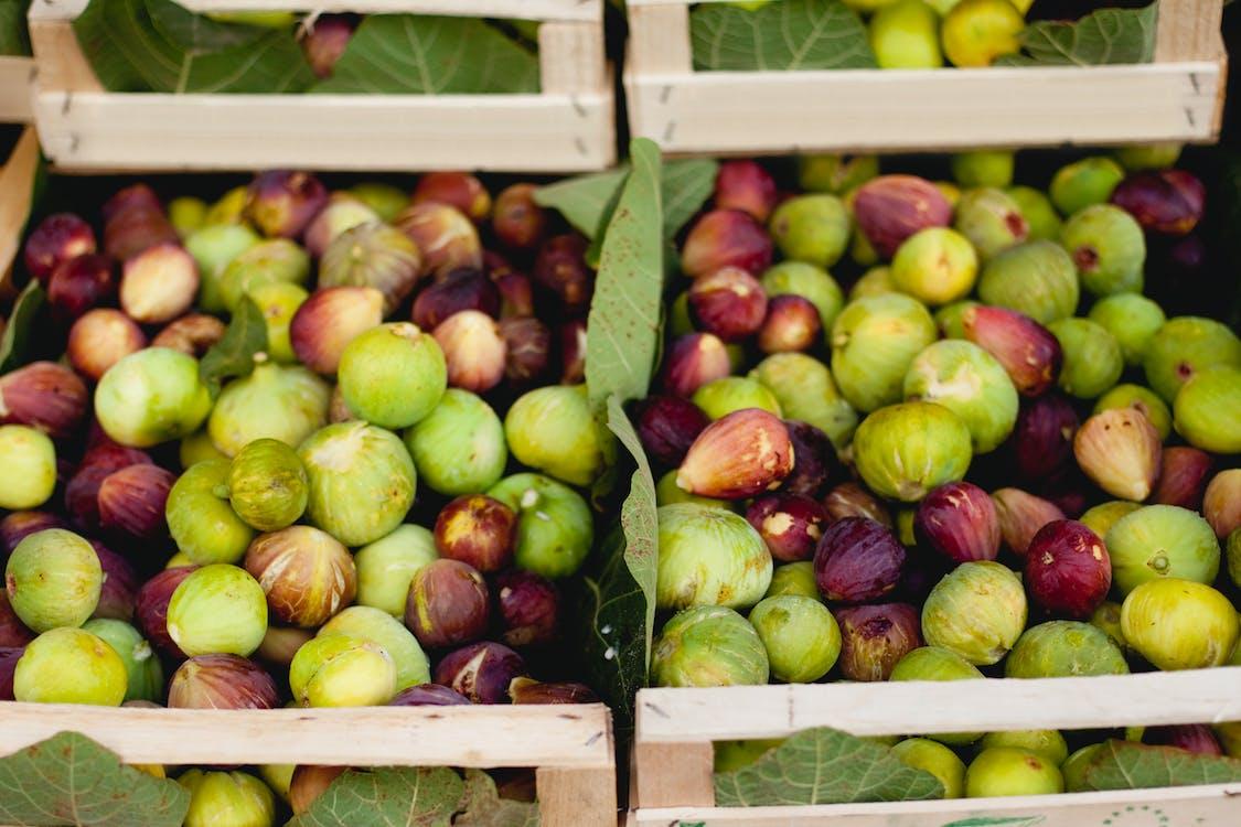 Immagine gratuita di agricoltura, autunno, bancarella