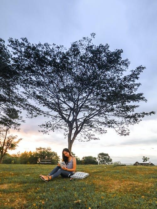 Kostenloses Stock Foto zu ausruhen, baum, entspannung, erholung