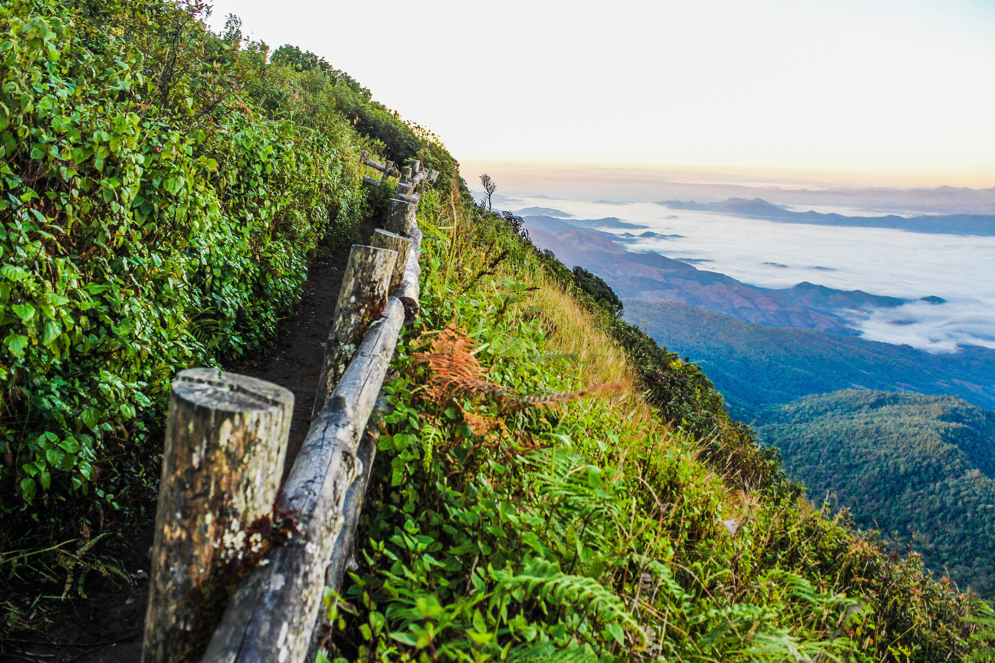 Log Fence on Mountain