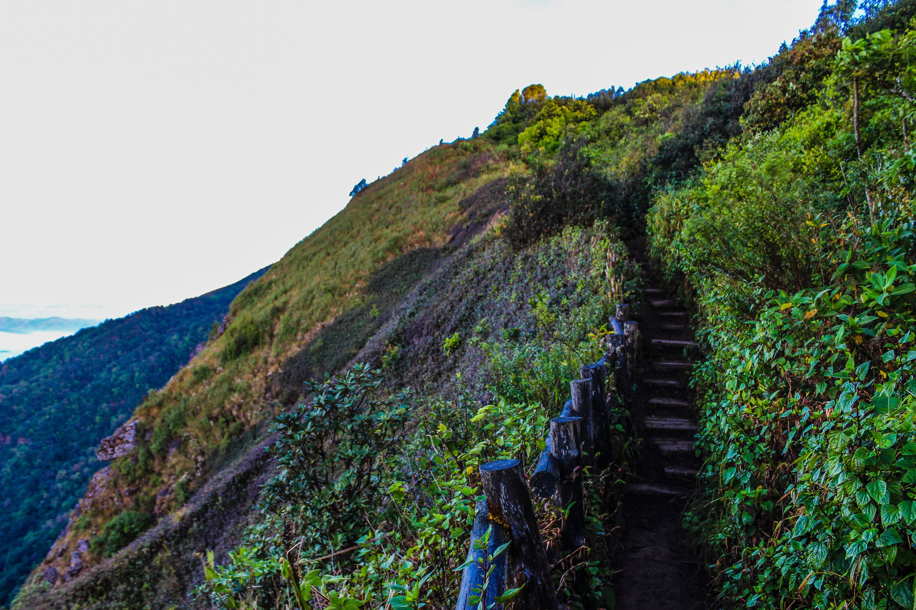 Pathway on Mountain With Blue Wooden Handrails at Daytime