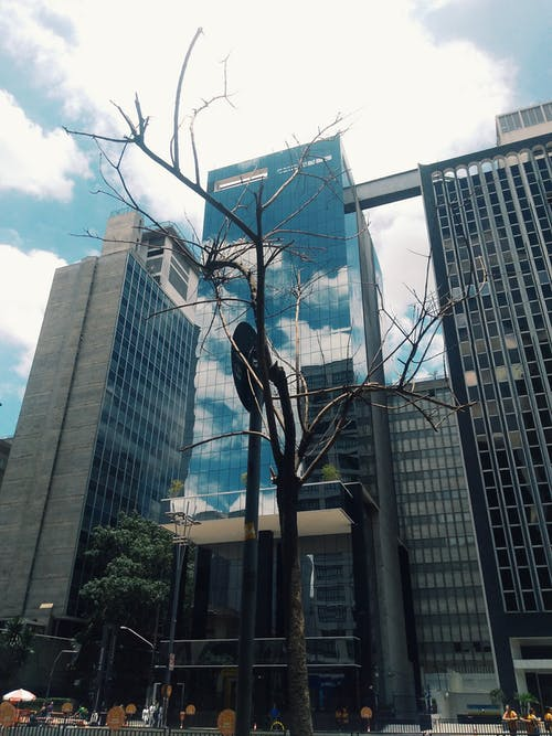 Foto stok gratis Arsitektur, bangunan, barang kaca, bidikan sudut sempit